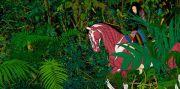 """<p isrender=""""true"""">Chen Fei, <em isrender=""""true"""">Fierce Light in the Eyes</em>, 2010, acrylic on linen, 2x 200 x 190 cm</p>"""