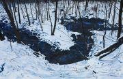 "<p>Meng Huang,&nbsp;<em isrender=""true"">Frozen Stream</em>,&nbsp;2013, oil on canvas, 180 x 280 cm</p>"