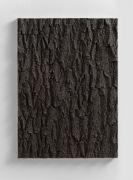 <p>Mirko Baselgia, <em>Landscape of growing II</em>, 1AP,&nbsp;2017, bronze (patina dark), 77.5 x 56 x 5 cm, edition of 3 + 1 AP, photo:&nbsp;Stefan Altenburger</p>