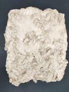 <p>尤莉亚&middot;斯坦纳,<em>deep skin VI</em>,2016,熟石膏,漆,约 42 x 32 cm</p>