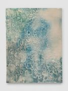 <p>Mirko Baselgia, <em>La pel digl g&ocirc;t (greenblue)</em>,&nbsp;2015, ceramic, glazed with pigments, 44 x 33 x 1.1 cm, photo: Stefan Altenburger</p>
