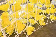 <p>Liu Ding, <em>Ruins of Pleasure</em>, 2007, iron, plastic, yellow paint, spotlights, 8250 x 1200 x 3000 cm, Installation view at and courtesy of Astrup Fearnley Museum of Modern Art, Oslo, Norway</p>