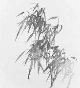 """<p isrender=""""true"""">单凡,<em>缓慢之作,108小时</em>,2015,布面铅笔,200 &times; 180 cm</p>"""