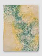 <p>Mirko Baselgia, <em>La pel digl g&ocirc;t (greenyellow)</em>,&nbsp;2015, ceramic, glazed with pigments, 44 x 33 x 1.1 cm, photo: Stefan Altenburger</p>