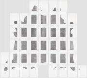 <p>Mirko Baselgia, <em>Igl tor muribund - La pel digl tor</em>,&nbsp;2015, dermotypie (printer: Arno Hassler, Atelier de Gravure, Moutier), 76 x 55 cm, photo: Stefan Altenburger</p>