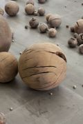 <p>Li Gang, <em>Beads</em>, 2012, wooden spheres, shaped from the connecting points of a dead tree of&nbsp; Yunnan Province, 395 pcs., &oslash; 0.5 - &oslash; 51 cm, detail</p>