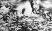 <p>Julia Steiner, <em>consistence of time</em>, 2011 (part 6), gouache on paper, 120 x 200 cm</p>