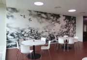 <p>Julia Steiner, <em>Bewegte R&auml;ume</em>, 2011, wall drawing, oil on wood; installation of coppered leafs, a public space project at Bern University of Applied Sciences, School of Agricultural, Forest and Food Sciences HAFL, Zollikofen, Switzerland</p>