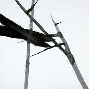 "<p isrender=""true"">单凡,<em>缓慢之作,38小时</em>,2011,布面油画,80 x 80 cm</p>"