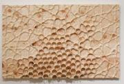 <p>Mirko Baselgia, <em>Midada da structura</em>, 2018, pine-wood (pinus cembra), 110 x 178 x 11 cm</p>